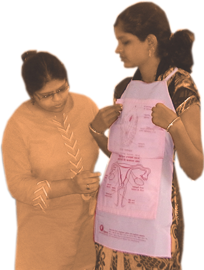 Apron on Female Reproductive System and Process of Menstruation